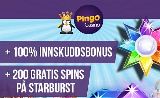 PingoCasino Norge