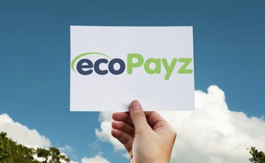 Slik setter du inn penger med ecopayz